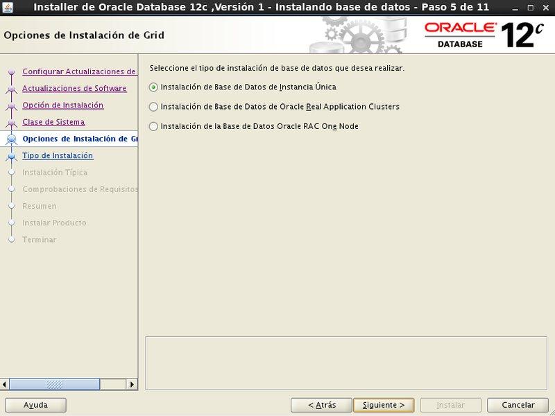 instalación Oracle Database 12c - Centos - 5 - opciones de instalaciones de Grid