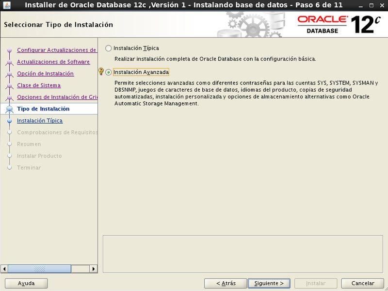 instalación Oracle Database 12c - Centos - 6 - tipo de instalación